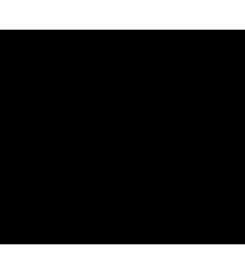 Расходный кассовый ордер А5 100л офсет