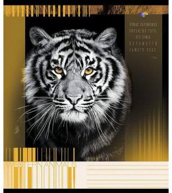 Тетрадь 60 листов клетка, обложка Животные в ассортименте