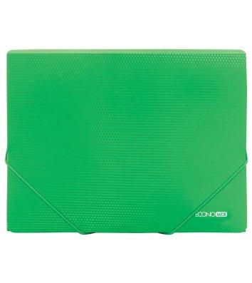 Папка А4 пластиковая на резинках зеленая, Economix