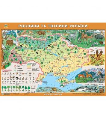 Карта Растения и животные Украины 65*45см картонная с планками