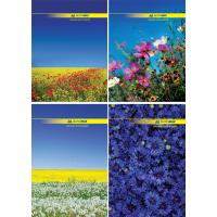 Книга канцелярська A4 96арк клітинка тверда обкладинка Nature, Buromax