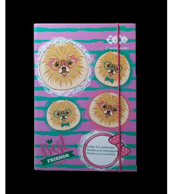 Папка B5 картонная на резинке для тетрадей Doggy, Zibi