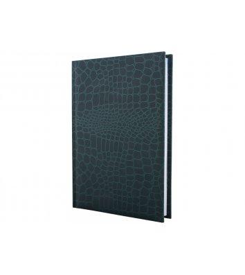 Щоденник недатований A6 Croсo зелений, Economix