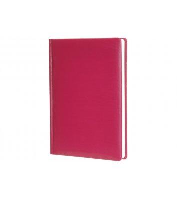 Щоденник недатований А5 Spectrum бордовий,Economix