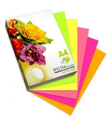 Набор бумаги А4 80г/м2 250л цветной Spectra Color, 5 цветов неон