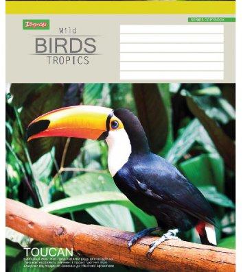 Тетрадь 36 листов линия, обложка Животные в ассортименте