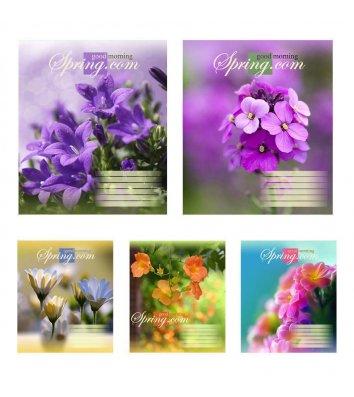 Тетрадь 24 листа линия, обложка Природа/Фрукты/Овощи в ассортименте