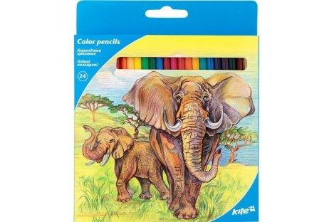 """Олівці кольорові 24шт """"Тварини"""", Kite"""