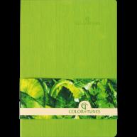 Діловий записник в лінію А5 Color Tunes салатовий, Buromax